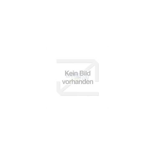 Vierfarben Verlag Das Computerlexikon für Einst...